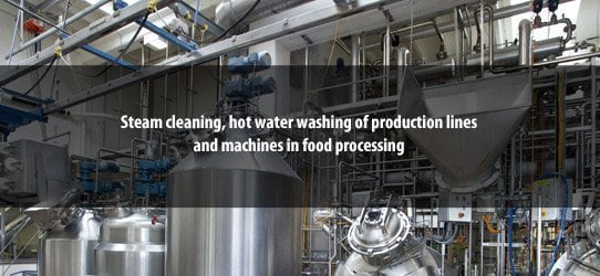 Steam cleaning, hot water washing of production lines and machines in food processing